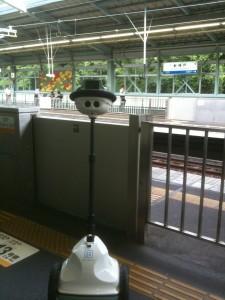 QB at Shin-Kobe